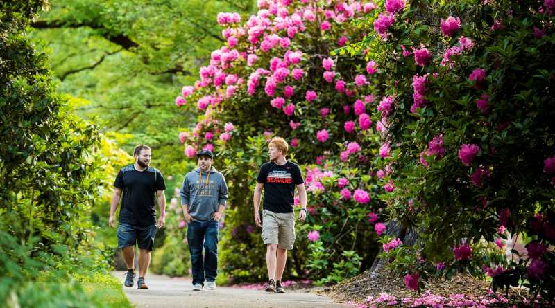 OSU campus with students and flowers