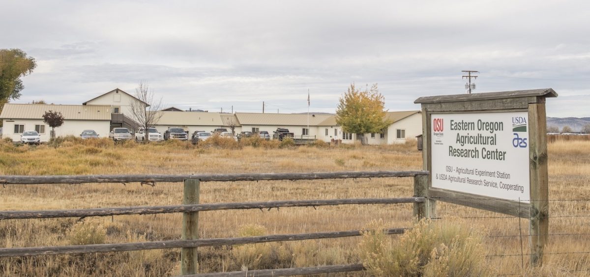 Eastern oregon research station